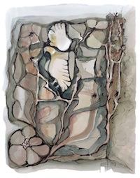 Garden Dove
